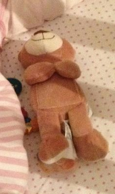 Lost on 08/01/2015 @ Barcelona . Lost teddy bear Barcelona Airport. Visit: https://whiteboomerang.com/lostteddy/msg/uuhgjf (Posted by Michael on 01/02/2015)