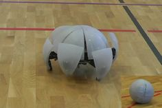 Hexapod Robot Can Roll Like Ball, Walk Like Spider - Geekologie