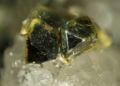 Iowaite, Mg4Fe+++(OH)8OCl•2-4(H2O), Palabora mine, Loolekop, Phalaborwa, Limpopo Province, South Africa. Crystals of iowaite. Fov 4 mm. Copyright: © Vincent Bourgoin