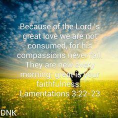 Donna Kopi's Profile | The Bible App | Bible.com