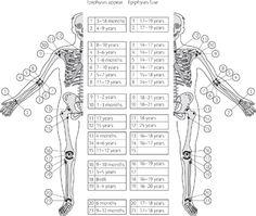 Bone age - Oxford Textbook of Trauma and Orthopedics