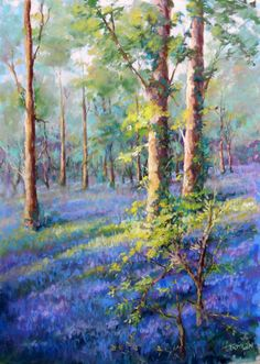 From my British Spring series:  'Bluebells at Alston Hall'.  14 x 19 inches pastel. available.