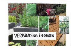 Moodboard Verbinding Outdoor Structures, Plants, Planters, Plant, Planting