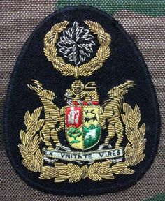 Special Forces WO badge for tunic Defence Force, Africans, Special Forces, Armed Forces, Troops, Badges, Cry, Southern, Tunic
