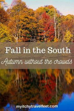 Where to go in the south to see autumn leaves without the crowds. Fall travel ideas for Kentucky, Tennessee, South Carolina and North Carolina for the best leaf peeping. Daniel Boone National Forest, Smoky Mountain National Park, Usa Travel Guide, Travel Usa, Travel Tips, Canada Travel, Myrtle Beach South Carolina, North Carolina, Travel Inspiration