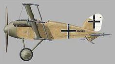 Albatros Dr.II by Zygmunt Szeremeta
