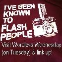 Grab button for Wordless Wednesday on Tuesday
