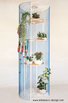 Urban Jungle in your house! a stringshelf to grow a vertical garden. A room divider that became a plantshelf : that's Bolina! www.alemeacci-design.com