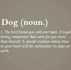 Dog - such a complex meaning
