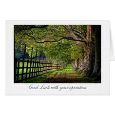 A Walk In The Park - Good Luck with your Surgery Card #zazzle HightonRidley