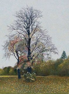 Catto Gallery | Available artwork  | Tree on Bodmin Hill  Annie Ovenden