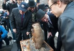 Punxsutawney Phil lives in Punxsutawney, PA  He's has a very special place there and crowds of people come to visit him on Groundhog Day.
