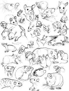 Rat Sketch Practice 8 by nEVEr-mor
