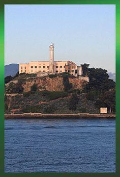 Tower Tours. Alcatraz+Muir Woods=$87 per person. http://www.towertours.com/tour_alcatraz_grand_city.html