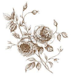gravure fleur: old-style vectoriel rose. Trace de dessin main levée