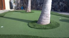 Aug 28, 2012 . Golf and Putting Greens . Expand Outdoor Living Areas with Synthetic Grass from Heavenly Greens . Synthetic Grass or Potty Train Your Dog? ...