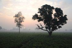 Fotos - Prem Jyoti Yoga & Ayurveda