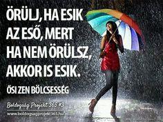Örülj, ha esik az eső, mert ha nem örülsz, akkor is esik. Rainbow Art, Rainbow Colors, Forest And Wildlife, No Rain No Flowers, Hair Arrange, Rain Umbrella, Mother Goddess, Tropical Forest, Grey Skies