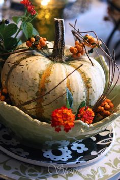 white autumn pumpkin - great center piece or individual place settings