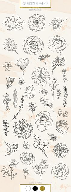 Botanist by Alina Sh on Floral Drawing, Botanical Line Drawing, Flower Pattern Drawing, Flower Line Drawings, Flower Patterns, Cute Flower Drawing, Flower Drawing Tutorials, Art Sketches, Art Drawings
