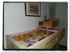 Guinea Pig Cages homemade versus store bought. - General guinea pig - guinea iFokus