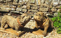 Discount Garden Statues Ltd - EXCLUSIVE Pair LIFE SIZE Hand Made in England Standing Dog Garden Statues, British Bulldog, Easter Island, Garden Ornaments, Poodle, Sale Items, Lions, Pugs, Lion Sculpture