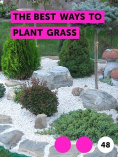 The Best Ways to Plant Grass. There are three ways to plant grass: with seeds, sod or plugs. Seed lawns in late summer, early fall or in April or May. Soil needs to be warm when seeded. Seeding will take more time to grow a lawn. Sod is more expensive than seed, but will create an instant lawn.  Sod can be put down at any time. Plugs are usually...