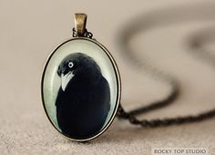 Love this! Raven Pendant  Crow Jewelry  Antique Brass Photo by NatureMandalas, $25.00