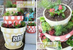 Polka Dotted Planter