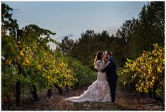 Creative Bride & Groom Portrait in the Vineyard at Sandalford Winery Fall Wedding, Wedding Gowns, Rain And Thunderstorms, Family Photographer, Bride Groom, Reception, Wedding Photography, Portrait, Celebrities