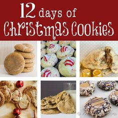 12 Days worth of delicious Christmas Cookies! These would make great neighbor gifts or find a recipe to take to a Christmas party! So many good recipes its hard to choose!