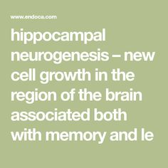 hippocampal neurogenesis – new cell growth in the region of the brain associated both with memory and le