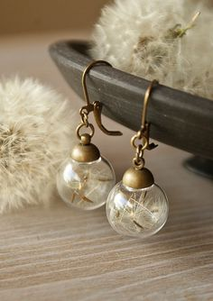 Hey, I found this really awesome Etsy listing at https://www.etsy.com/listing/189827664/real-dandelion-earringsseeds-earrings