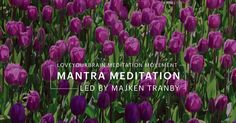 A collection of a variety of 10 minute meditations