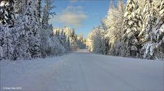 Winter on the Walcott Road. Houston, BC. Travel Houston British Columbia