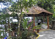 Pachira Lodge Dining Room. Tortuguero, Costa Rica