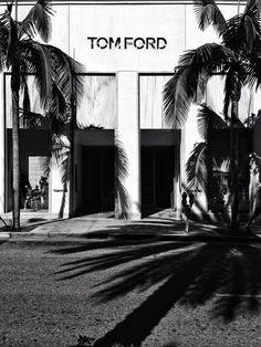 tom ford, palm trees