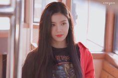 Kpop Girl Groups, Kpop Girls, Sakura Miyawaki, Yu Jin, Japanese Girl Group, Woollim Entertainment, Kim Min, The Wiz, Sunflowers