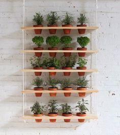 Aqui, flores, plantas e temperos podem se misturar. São apenas ripas de madeira com furos apropriados para encaixarem os vasos e cordas nas laterais para segurar e suspendê-las.                                                                                                                                                                                 Mais