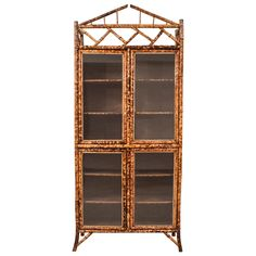 19th Century English Bamboo, Leather and Glass Armoire or Bookcase