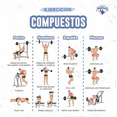 Ejercicios de aislamiento vs. ejercicios multiarticulares • FullMusculo Whole Body Workouts, Gym Workouts, At Home Workouts, Fitness Tips, Fitness Motivation, Health Fitness, Gym Jones, Back And Shoulder Workout, Indoor Workout