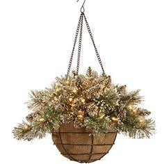 National Tree Glittery Bristle Pine Hanging Basket with Pine Cones 20Inch by National Tree >>> To view further for this item, visit the image link.