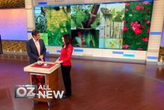 Natural Pain Killers That Work   The Dr. Oz Show   Follow this board for all the latest Dr. Oz Tips!