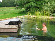 Natural Pools - Natural Swimming Pools and Ponds - Good Housekeeping