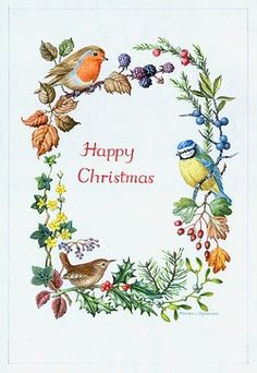 Christmas Oval Border û with robin on brambles, wren on holly, blue tit on sloe, hawthorn, winter jasmine, mistletoe etc