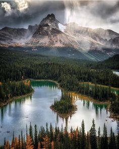 "381 Likes, 15 Comments - Nature Photography (@tknaturephotos) on Instagram: ""Yoho National Park Follow us @tknaturephotos Photo by @nickrlake"""