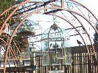 #UpCycle a light fixture from the Habitat ReStore into a rain guard for your bird feeder.
