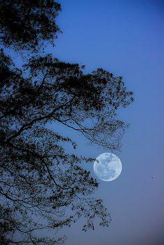 Full moon in Ho Chi Minh City, Vietnam, March 21, 2011