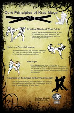Infographic Core Principles of Krav Maga | Infographics Creator