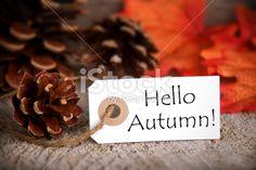 Tag with Hello Autumn Royalty Free Stock Photo